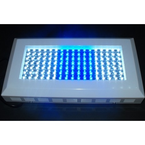Plafoniere a led for Plafoniera led acquario